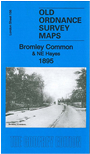 L 156.2  Bromley Common 1895